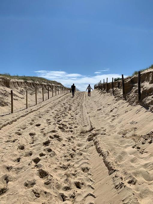 Passage dans les dunes de sable landais